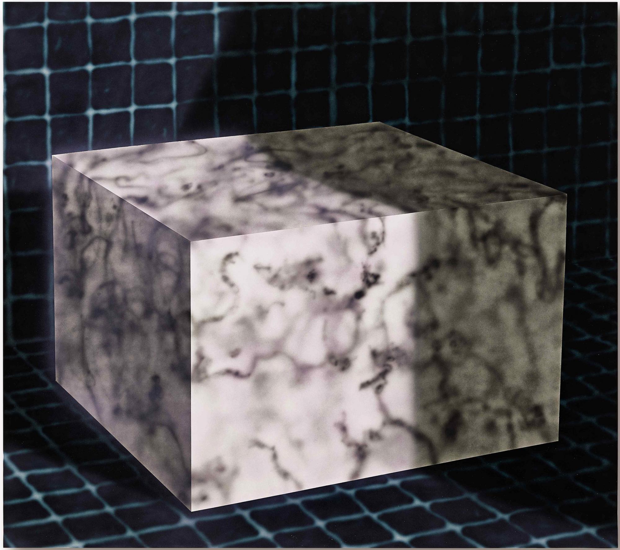 Avery-Singer---Untitled-(Cube).jpg
